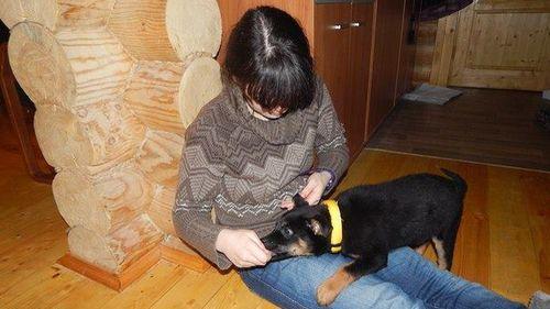 Alarm bells sounded after Varvara's parents received a goodbye text asking them to care for her beloved pet dog. (Facebook)