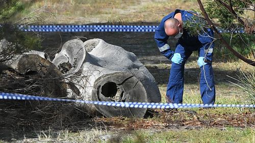 A forensic police officer examines a section of the park.