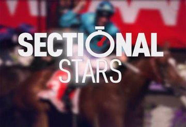 Sectional Stars