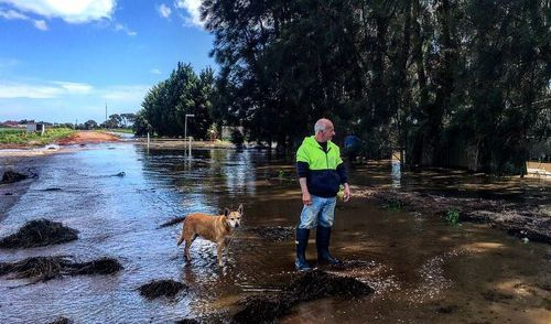 Virginia resident Dave, and his dog Chloe, inspect their home. (9NEWS)