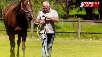 How a rescue horse saved an ex-cop with PTSD