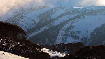 Plenty more snow is on the way later this week. (Mt Hotham via Twitter)