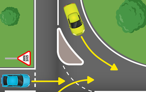 Do you know Australia's weird and lesser-known road rules?