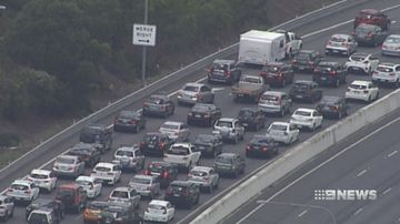Congestion on the M1. (9NEWS)