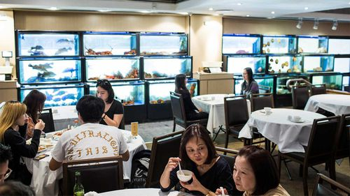 Golden Century was well-known for its walls lined with seafood tanks.