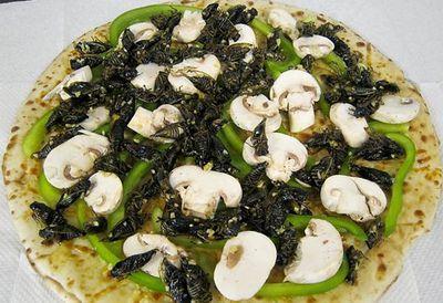 Cicada pizza