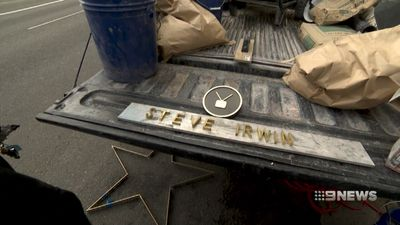 First look at Irwin's Walk of Fame star