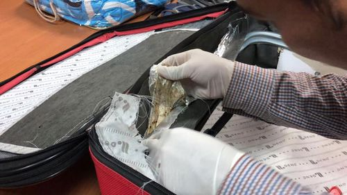Heroin allegedly found in the suitcase of Australian woman VeThi Tran.  (Image: Cambodia General Department of Immigration/Facebook)
