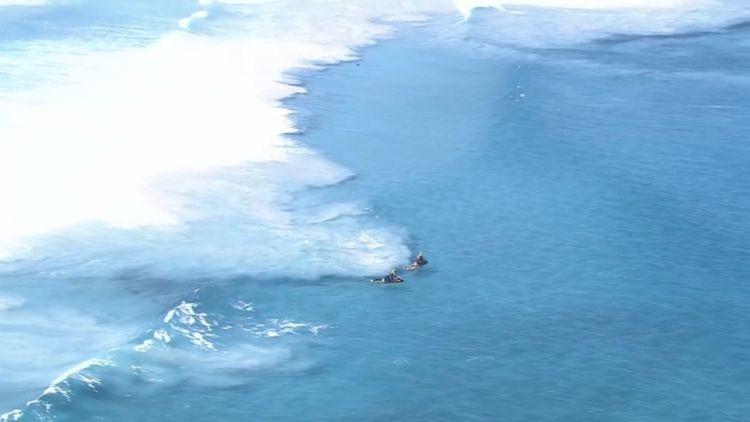 Surfer vanishes in suspected shark attack in Australia