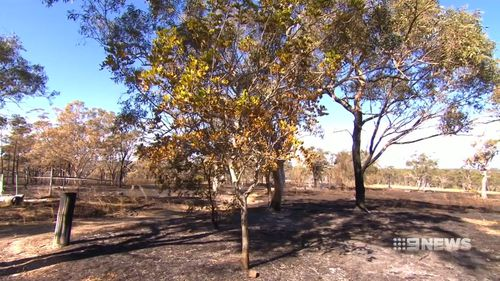 The fire burnt through 360 hectares of bushland. Picture: 9NEWS