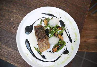 Pan roasted barramundi, with black basil emulsion
