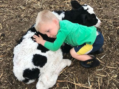 The family fear they'll have nothing to pass onto the next generation - children Thomas, 2, Dylan, 3, and Jordan, 12 because of the drought's impact.