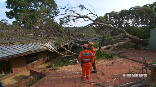 The SES responded to 330 calls for help.