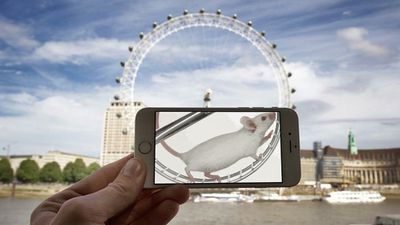 Despite being controlled by a giant mouse, the London Eye still moves at a snail's pace. (Instagram)