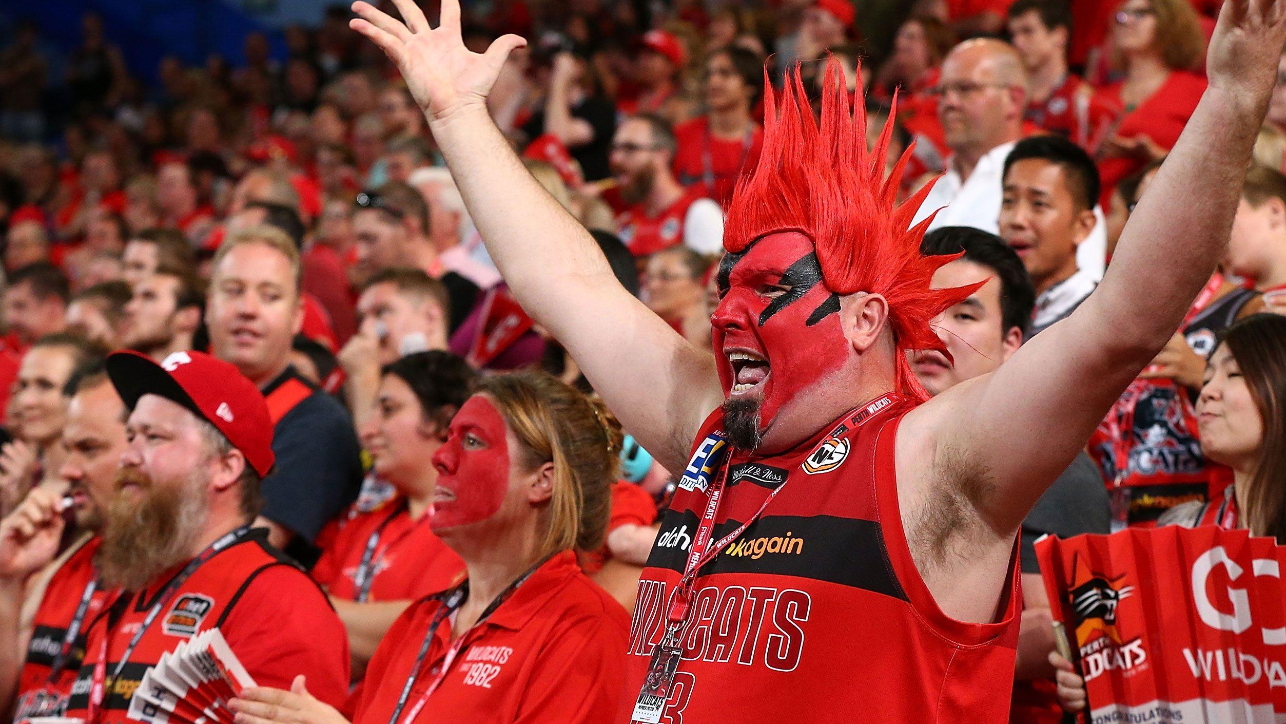 Perth Wildcats fandom is huge.