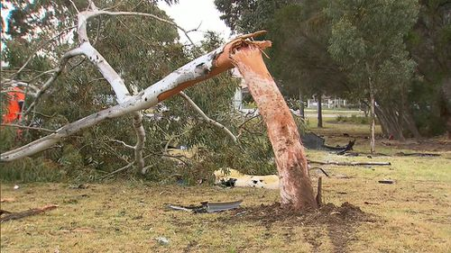 Emergency services say the driver is lucky to survive the force of the crash. (9NEWS)