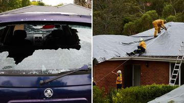 Residents in the northern suburb of Berowra were left with collapsed roofs and smashed windscreens after heavy hail pelted the area last night.
