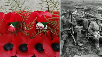 Hand-knitted poppies symbolise and pay tribute the lost soldiers
