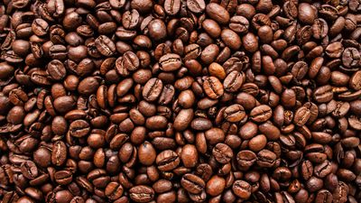 Longevity foods: 10 things to eat and drink for a longer life