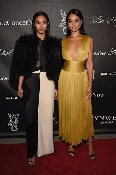 The style set was out in full force overnight in New York for the annual Gabrielle's Angel Foundation Angel Ball, an event that helps raise vital funds for cancer research. Among the notable attendees were Aussie models Shanina Shaik and Andreja Pejic, who both took black-tie fashion risks (Shanina in yellow and Andreja Pejic in prints) and won. Click through to see what everyone wore.