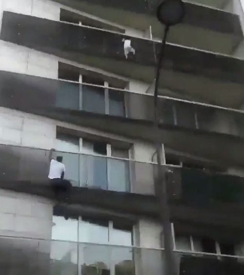A brave man has been applauded for his heroic 'Spiderman'-like efforts in rescuing a child dangling from a building. Picture: Supplied.