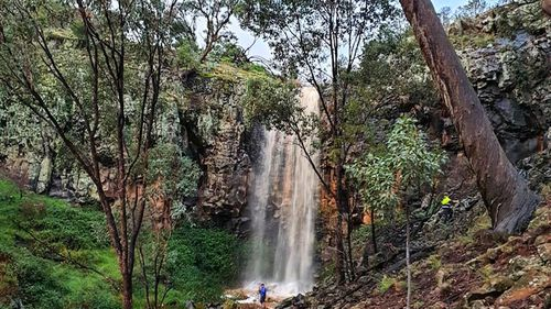 The waterfall on Lisa Darley's farm near Orange, NSW, is now flowing for the first time in three years.