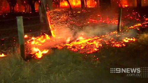 West Australians are being urged to dig deep and help those affected by the fires. (9NEWS)