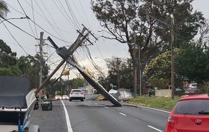 Powerlines down, trees toppled: Sydney smashed by 100km/h wind gusts