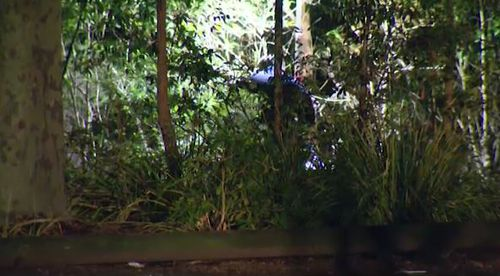 Police have been searching through the bushland where the girl was attacked over five hours. Picture: 9NEWS