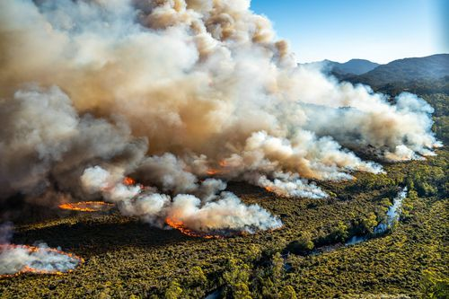 Tasmania is being ravaged by fire, one blaze has been burning since December.
