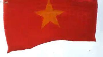 The Vietnamese flag kite was 18m. (Supplied)
