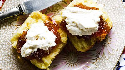 "<a href=""http://kitchen.nine.com.au/2016/06/06/12/56/alanas-orange-scones-with-cinnamon-whipped-cream"" target=""_top"">Alana's Orange scones with cinnamon whipped cream</a> recipe"