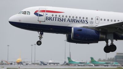 Traveller sues British Airways for sitting beside obese man