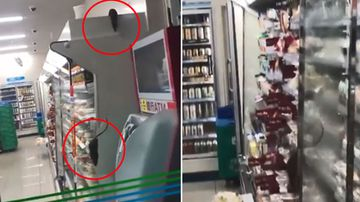 Rats in Japanese food store