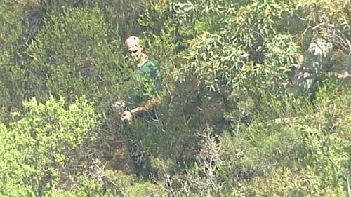 Aerial footage appears to show the accused leading detectives through NSW bushland. (9NEWS)