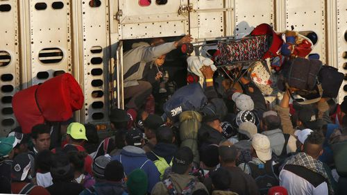 Asylum seekers pack into a chicken truck to escape the violence in Latin America.