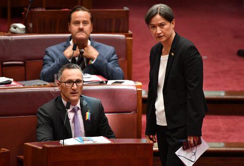 Labor Senator Penny Wong hailed the bill's passage as a historic momennt. (AAP)