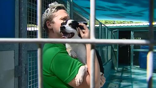 RSPCA Townsville shelter manager Jacinta Wight with one of the dogs. (9 NEWS)