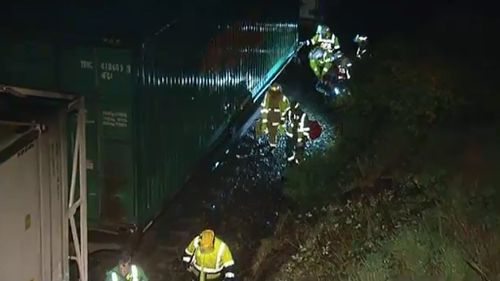 Firefighters and paramedics rescued a train driver crushed by a tree in the Adelaide Hills. (9NEWS)