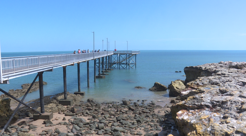 Jamie Hall was fishing off Nightcliff Jetty on Saturday afternoon, when one of his friends hooked onto something.