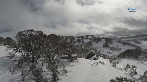 Snow in Perisher, NSW