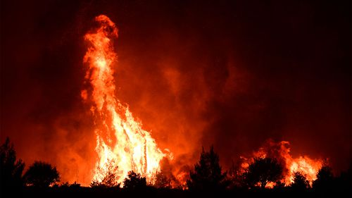 Flames burn a forest near Galatsona village on Evia island north of Athens in Greece.