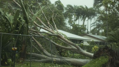 Cyclone Marcus brought winds not seen in a decade.