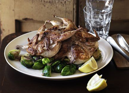 Grilled quail with sautéed brussels sprouts