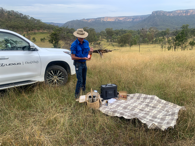 Blue Mountain picnic safari