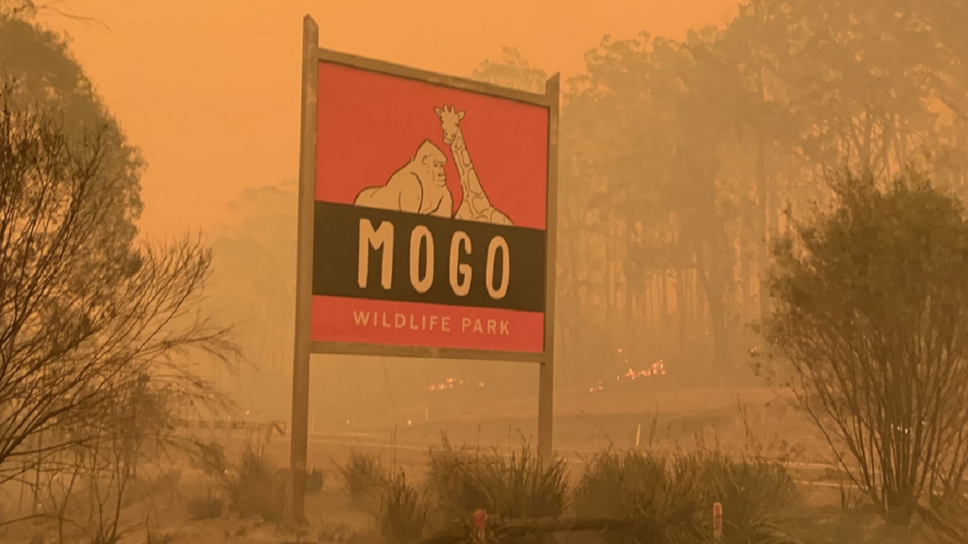 Mogo Wildlife Park on fire main sign