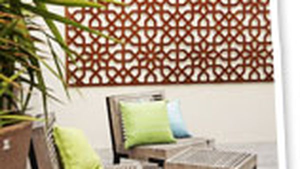 Dress up your garden walls and fences