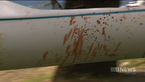 Mr Quinlivan's surf ski was covered in blood. (9NEWS)