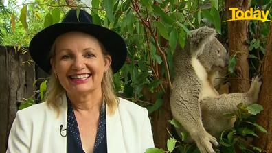 "Ms Ley said the land wasn't ""core habitat"" for koalas."
