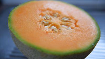 Workers lose jobs as rockmelon sales slump